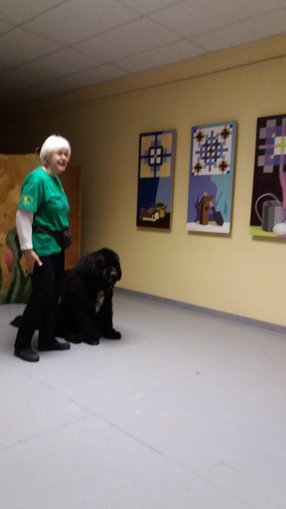 Rado, savas saimnieces mudināts, rāda suņu skolā iegūtās prasmes.