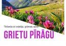 Ceļojums kopā ar Grietu Pīrāgu